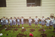 Tree Plantation Activity(Sr.KG)