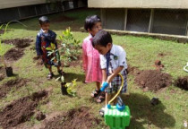 Plantation Activity(Nursery)