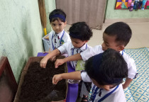 Germination Activity(Nursery)