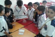 Marble Printing Activity(Sr.KG)